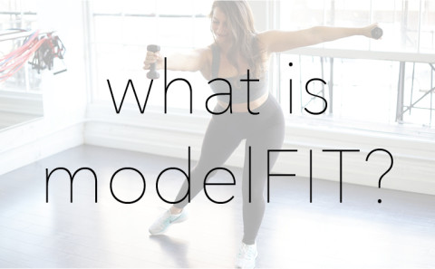 what is modelFIT BUTTON